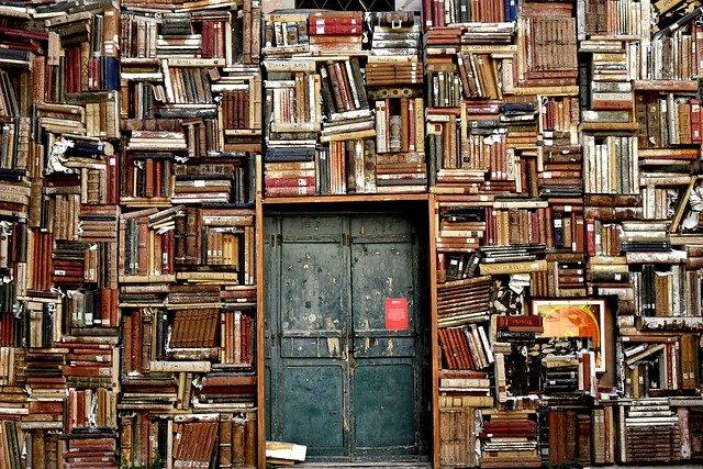 アメリカの図書館の種類(アメリカ 図書館 検索)